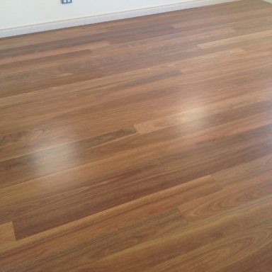 QLD Spotted Gum Waterbased